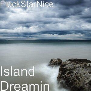 FlockStarNice 歌手頭像