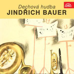 Jindřich Bauer 歌手頭像