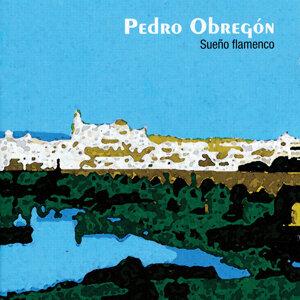 Pedro Obregón 歌手頭像