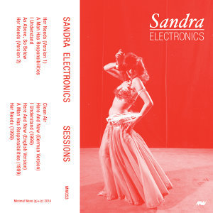 Sandra Electronics