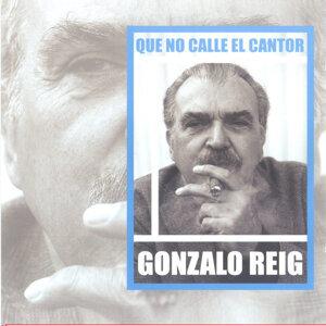 Gonzalo Reig 歌手頭像