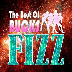 Buck Fizz 歌手頭像