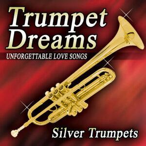 Silver Trumpet アーティスト写真