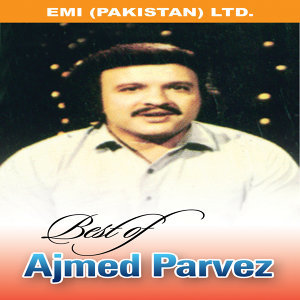 Amjad Pervez 歌手頭像