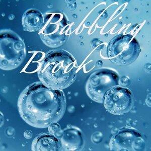Babbling Brook 歌手頭像