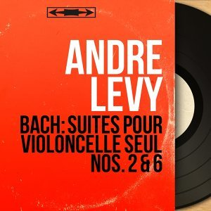 André Lévy アーティスト写真