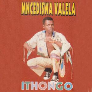 Mncediswa Valela 歌手頭像