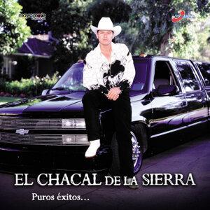 El Chacal De La Sierra アーティスト写真
