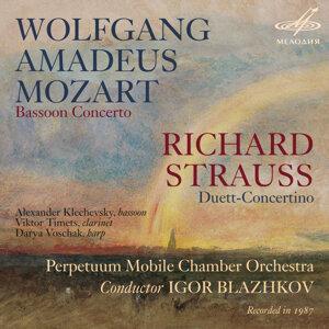 Alexander Klechevsky | Igor Blazhkov | Perpetuum Mobile Chamber Orchestra 歌手頭像