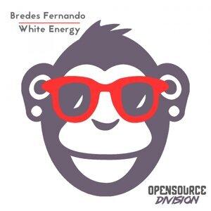 Bredes Fernando 歌手頭像