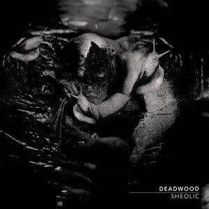 Deadwood 歌手頭像