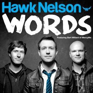 Hawk Nelson 歌手頭像