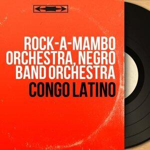 Rock-a-Mambo Orchestra, Negro Band Orchestra アーティスト写真