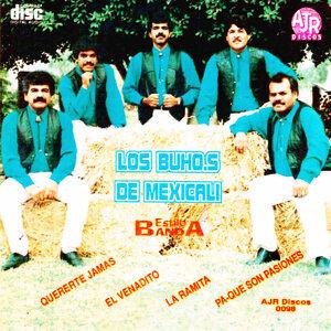 Los Buhos 歌手頭像