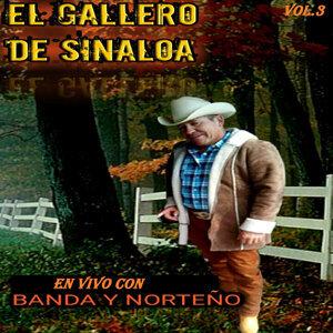 El Gallero De Sinaloa アーティスト写真