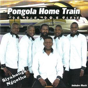 Pongola Home Train 歌手頭像