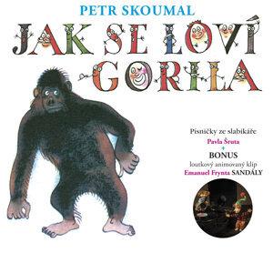 Petr Skoumal 歌手頭像