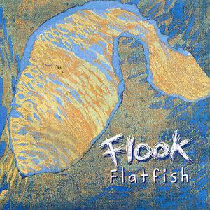 Flook 歌手頭像