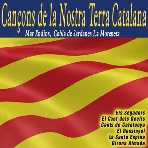 Mar Endins|Cobla de Sardanes La Moreneta|Cobla de Sardanas La Moreneta 歌手頭像