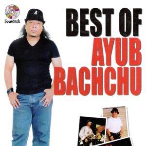 Ayub Bachchu アーティスト写真
