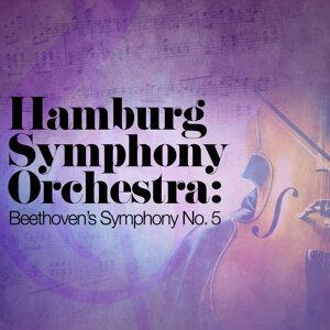 Hamburg Symphony Orchestra 歌手頭像
