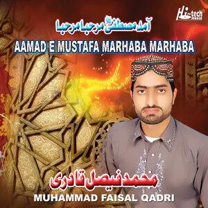 Muhammad Faisal Qadri 歌手頭像