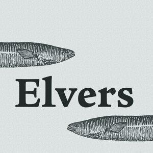 Elvers アーティスト写真