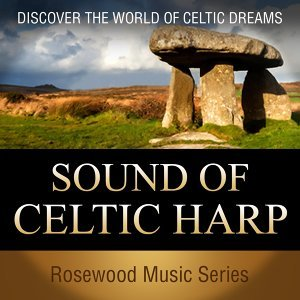 The Celtic Travellers アーティスト写真