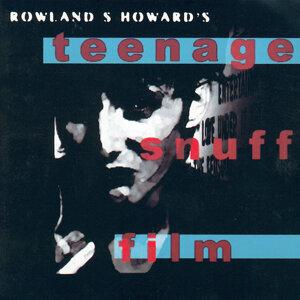 Rowland S. Howard 歌手頭像