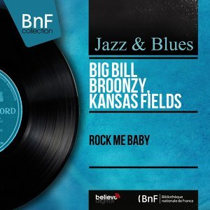 Big Bill Broonzy, Kansas Fields 歌手頭像