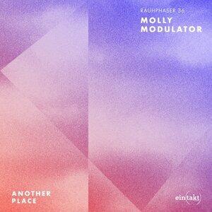 Molly Modulator アーティスト写真