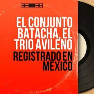 El Conjunto Batacha, El Trio Avileño 歌手頭像