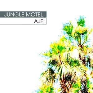 Jungle Motel 歌手頭像