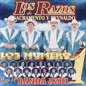 Los Razos Con La Banda Azul 歌手頭像