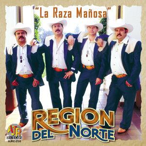 Region Del Norte アーティスト写真