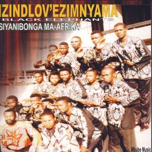 Izindlov' Ezimnyama (Black Elephants) 歌手頭像
