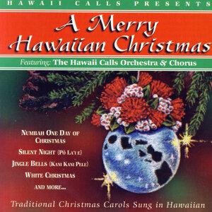 Hawaii Calls, The Hawaii Calls Orchestra And Chorus 歌手頭像