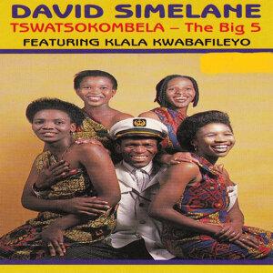 David Simelane 歌手頭像