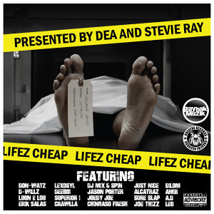 DEA & Stevie Ray アーティスト写真