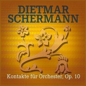 Dietmar Schermann 歌手頭像