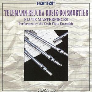 Cech Flute Ensemble 歌手頭像