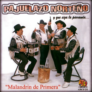 Pajuelazo Norteño アーティスト写真