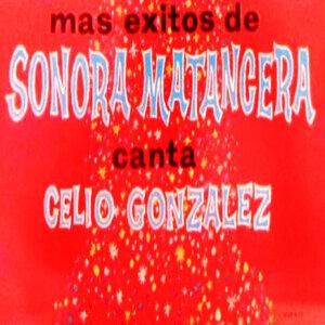 Sonara  Matancera アーティスト写真