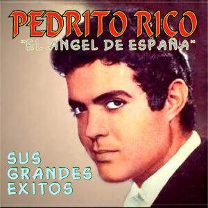 """Pedrito Rico """"El Angel De España"""" 歌手頭像"""