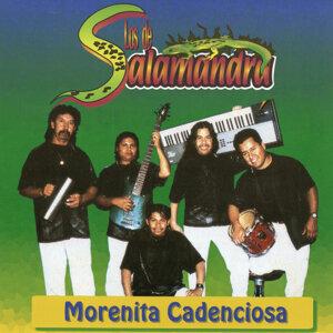 Los De Salamandra 歌手頭像