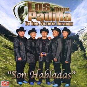 Los Hermanos Padilla アーティスト写真