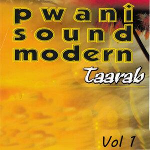 Pwani Sound Modern Taarab 歌手頭像