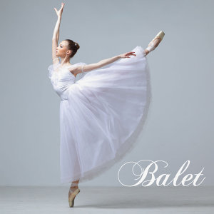Balet Pasmo アーティスト写真