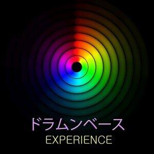 エレクトロニカ DJ Experience 歌手頭像