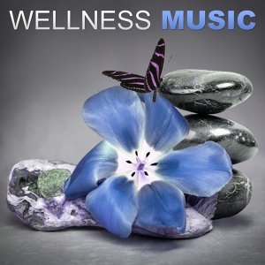 Wellness 歌手頭像